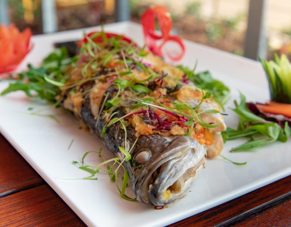 Thai Barramundi